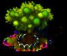 Guavenbaum xl.png