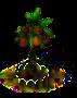 Kokospalme xl.png