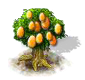 kumquat_Icon.png