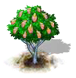 magellanbeech_upgrade_0_Icon.png