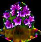 magnolia_upgrade_0_Icon.png