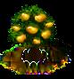 Mandarinenbaum xl.png