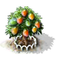 Mangobaum xl.png