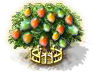 Mangobaum xxl.png