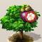 Mangostanfrucht.png