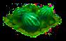 melon_Icon.png