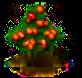 Mombinpflaumenbaum.png