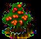 Mombinpflaumenbaum xl.png