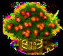 Mombinpflaumenbaum xxl.png