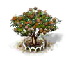 Mongongo-Baum xl.png