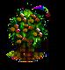 montezumacypress_upgrade_0.png