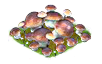 mushroom_Icon.png