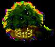Olivenbaum XXL.png