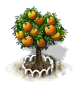 Orangenbaum XL.png
