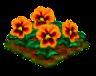 orangepansy.png