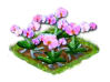 orchid_Icon.png