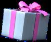 Paket4.png