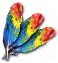 parrotfeather.png