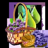 picnicquestaugl2016_basket1_big[1].png