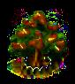 Pistazienbaum xl.png