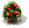 pomegranate_upgrade_0_Icon.png