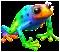 rainbowFrog[1].png
