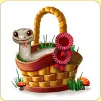 Reptilien-Mode-Korb.jpg