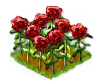 rose_Icon.png