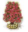 rowantree_upgrade_2_Icon.png