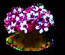 sakura_upgrade_0_Icon.png