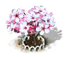 sakura_upgrade_1_Icon.png