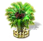 salakpalm_upgrade_2_Icon.png