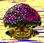Seidenbaum xxl.png