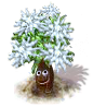 silvertree_upgrade_0_Icon.png