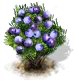 sloe_upgrade_0_Icon.png
