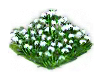 snowdrop_Icon.png