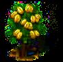 starfruit_upgrade_0_Icon.png