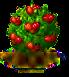 Surinamkirschbaum.png