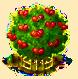 Surinamkirschbaum xxl.png