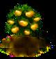 tangerine_upgrade_0_Icon.png