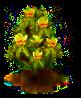 Tulpenbaum.png