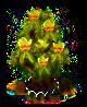 Tulpenbaum xl.png