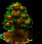 Walnussbaum.png