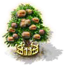 Walnussbaum XXL.png