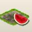 Wassermelone.png