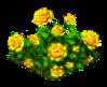 yellowrose_Icon.png
