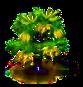 Ylang-Ylang-Baum.png