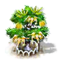 Ylang-Ylang-Baum xl.png