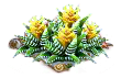zebraplant.png