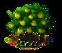 Zimtapfelbaum xl.png